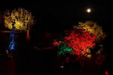Gartenbeleuchtung für Private Feiern und Feste