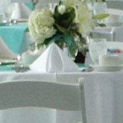 Tablecloths And Chair Covers For Rent Parson Ikea Linen Rentals In Lansing Mi Napkins Haslett Okemos East Greater