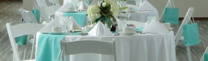 rent tablecloths and chair covers toys r us linen rentals in lansing mi napkins for haslett okemos east greater