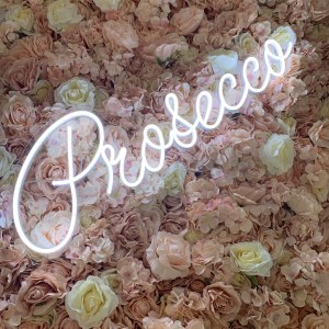 Neon Prosecco Sign