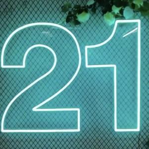 21st Birthday Neon Sign