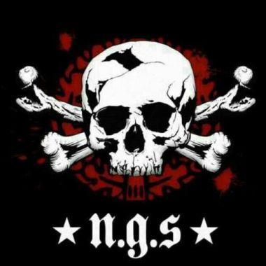 NGS logo