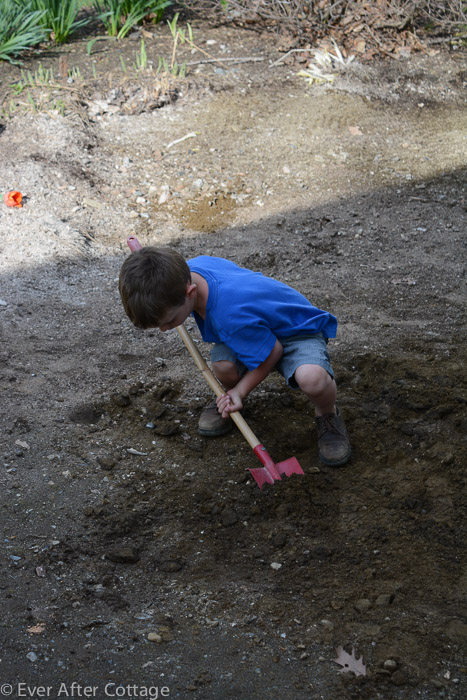 digging-3