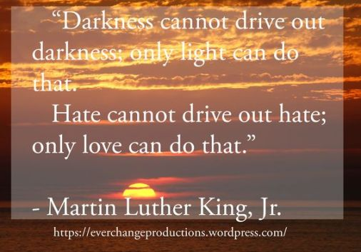 """""""Darkness cannot drive out darkness, only light can do that. Hate cannot drive out hate; only love can do that."""" -Martin Luther King, Jr. motivational quote"""