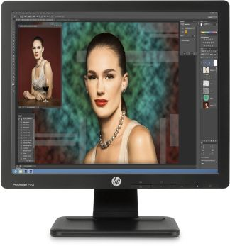 HP Inc. ProDisplay P17A LED MNT F4M97AT#ABB