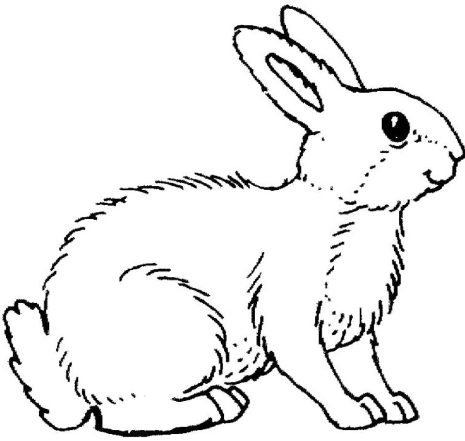 Get This Printable Rabbit Coloring Pages for Kids BV21Z
