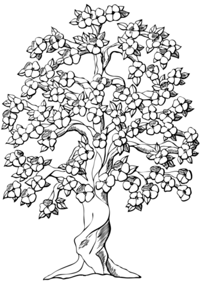 Tree Coloring Pages to Print Online   625N6