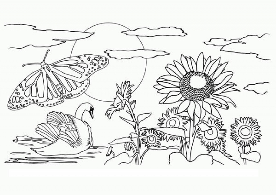 Get This Easy Preschool Printable Of Nature Coloring Pages