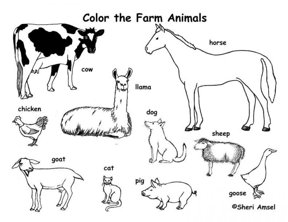 Farm Animal Coloring Pages Free to Print   j6hdb