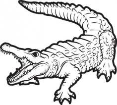 Free Alligator Coloring Pages for Kids yy6l0
