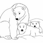20+ Free Printable Polar Bear Coloring Pages