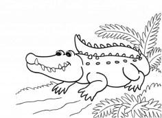 Printable Alligator Coloring Pages for Kids 5prtr
