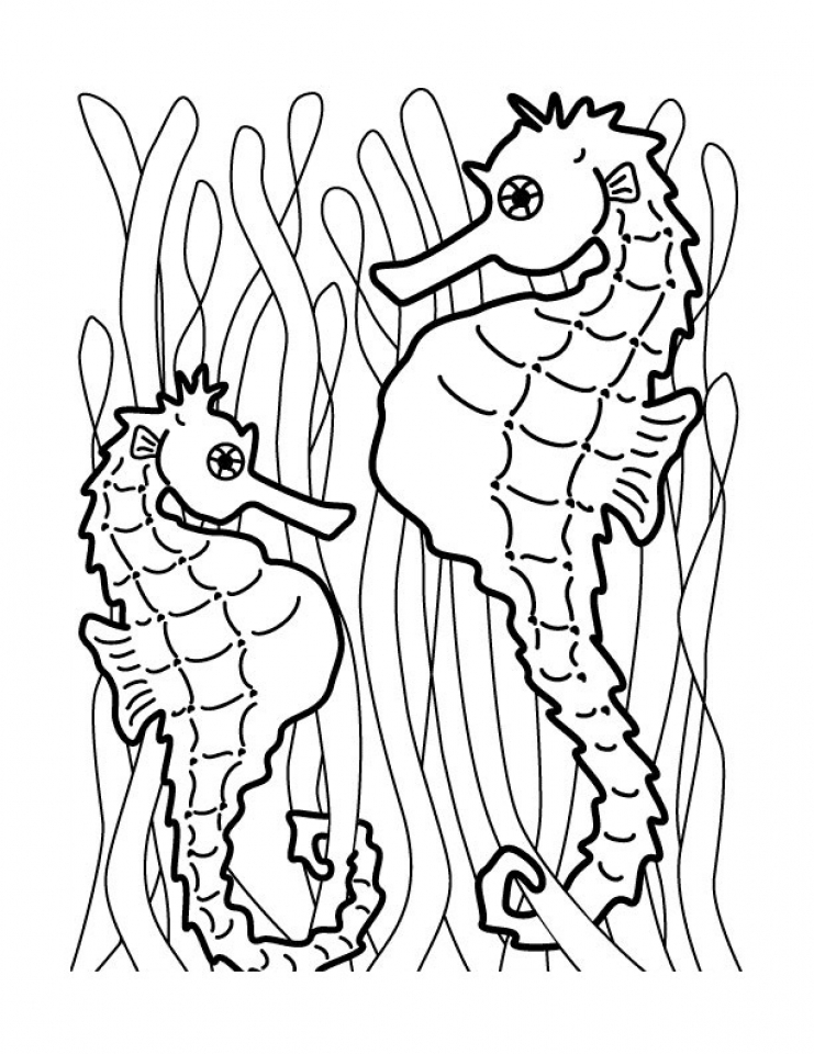 20+ Free Printable Seahorse Coloring Pages