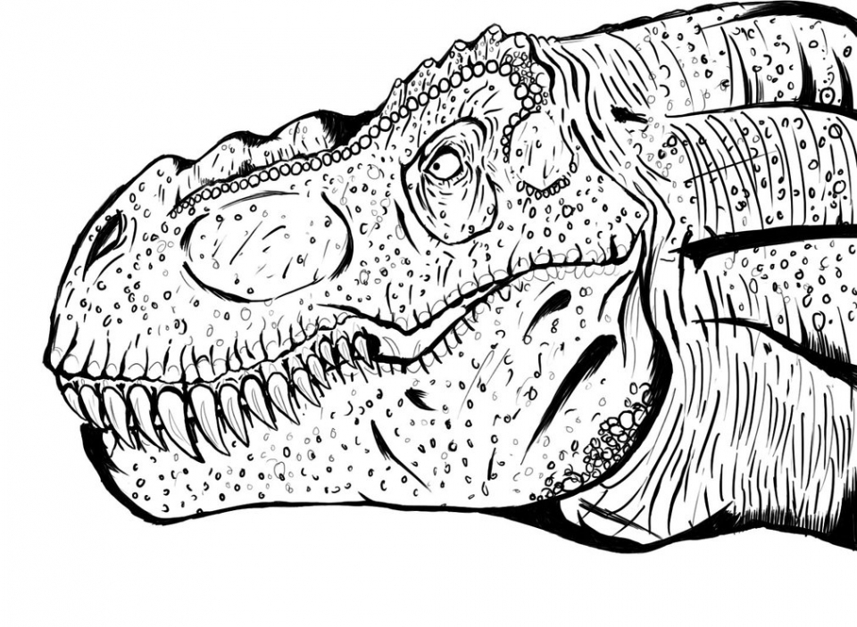 printable t rex coloring pages - T Rex Coloring Pages