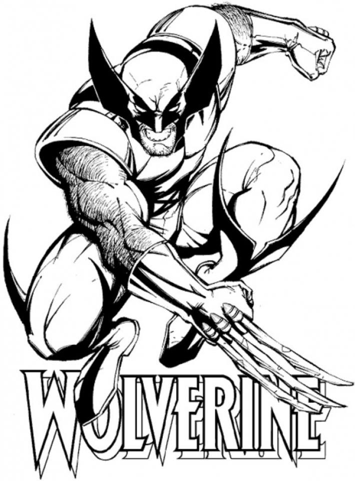 Wolverine Coloring Pages Printable for Kids   xi226
