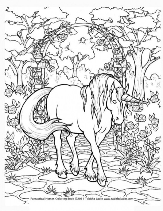 Free Difficult Animals Coloring Pages for Grown Ups BNY7