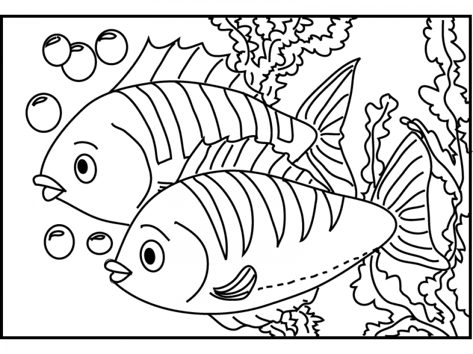 Online Fish Coloring Pages   703926