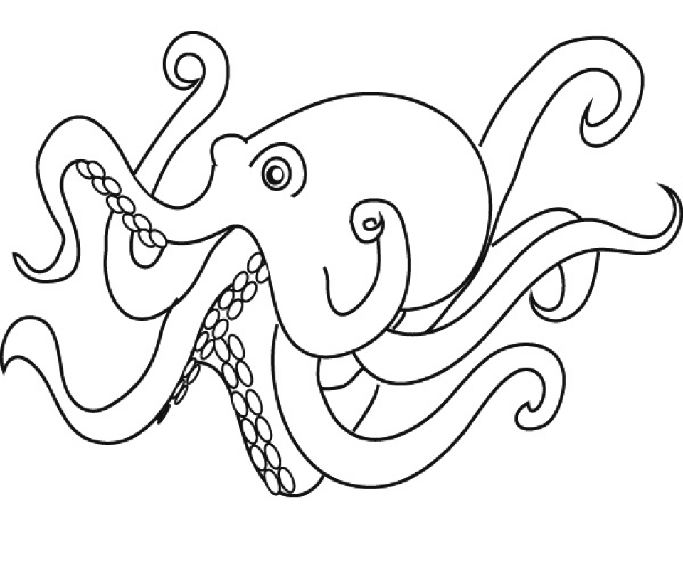 Printable Octopus Coloring Pages Online   2x548