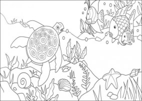 Rainbow Fish Coloring Pages 96758