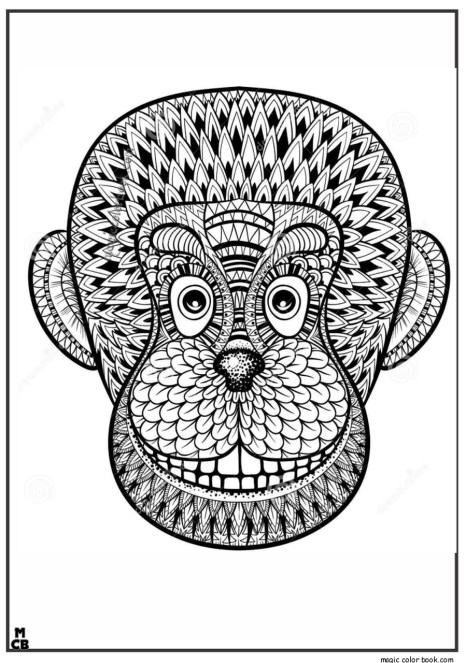 Monkey Coloring Pages for Adults - 31679