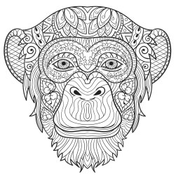 Monkey Coloring Pages for Adults - 31902