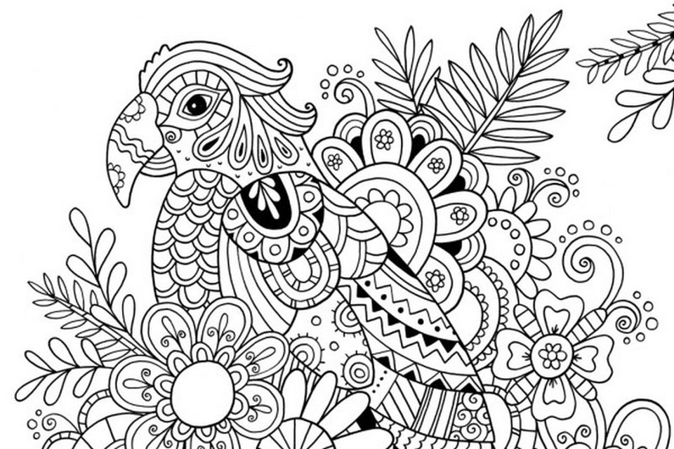 Online Summer Printable Coloring Pages for Adults - 89210
