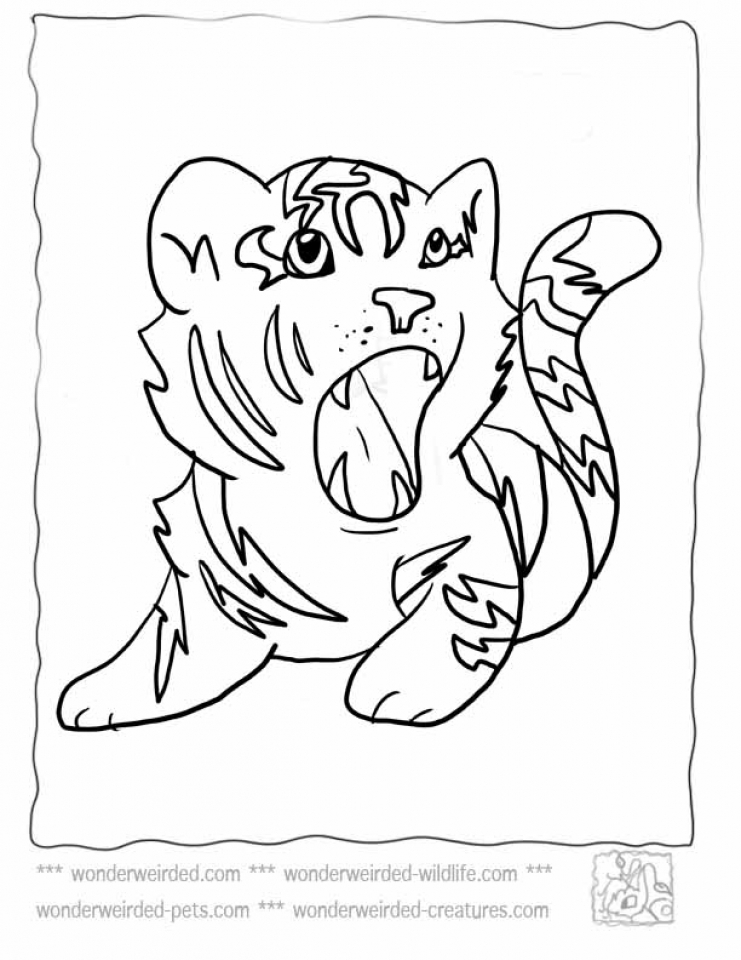 Baby Tiger Coloring Pages to Print   80413