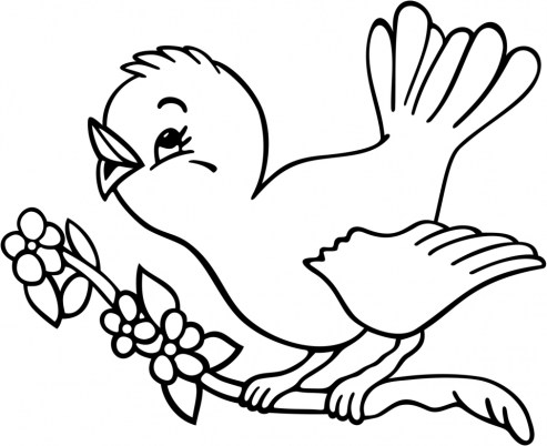 Bird Coloring Pages Free Printable 15482