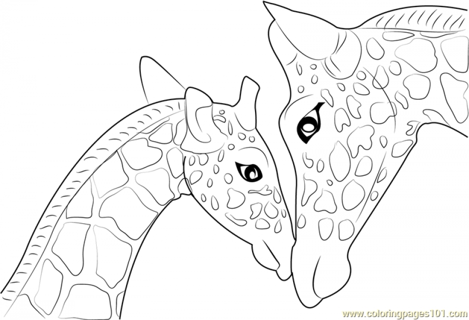 Giraffe Coloring Pages Free   74551