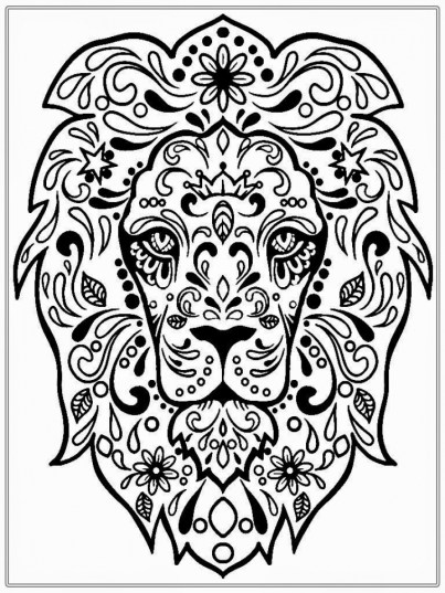 Lion Coloring Pages for Adults 41764