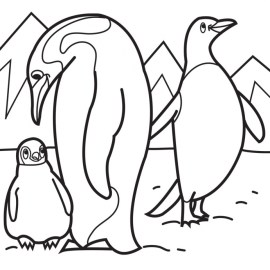 Penguin Coloring Pages Printable 85872