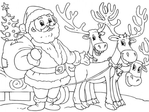 Reindeer Coloring Pages Free for Kids 09571