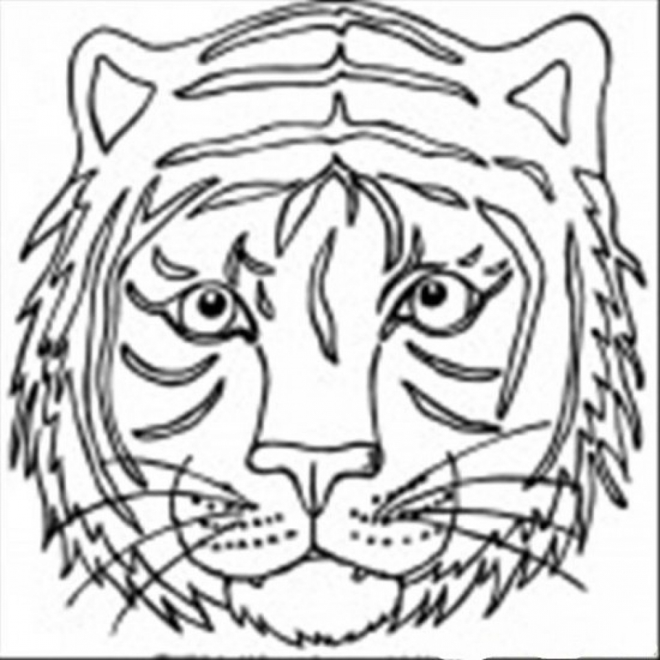 Tiger Face Mask Template Sketch Coloring Page