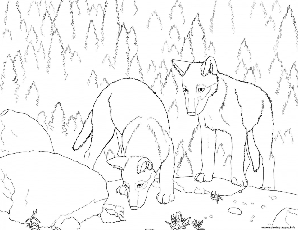 Wolf Coloring Pages to Print for Free   86704