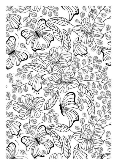 Advanced coloring pages of Butterfly for Adults - 7fg5