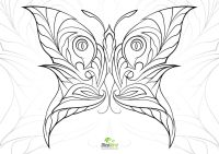 Get This Butterfly Coloring Pages Adults Printable - 7ahf5