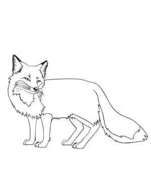 Fox Coloring Pages Free - 89xbs