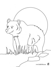 Bear Coloring Pages to Print 64521