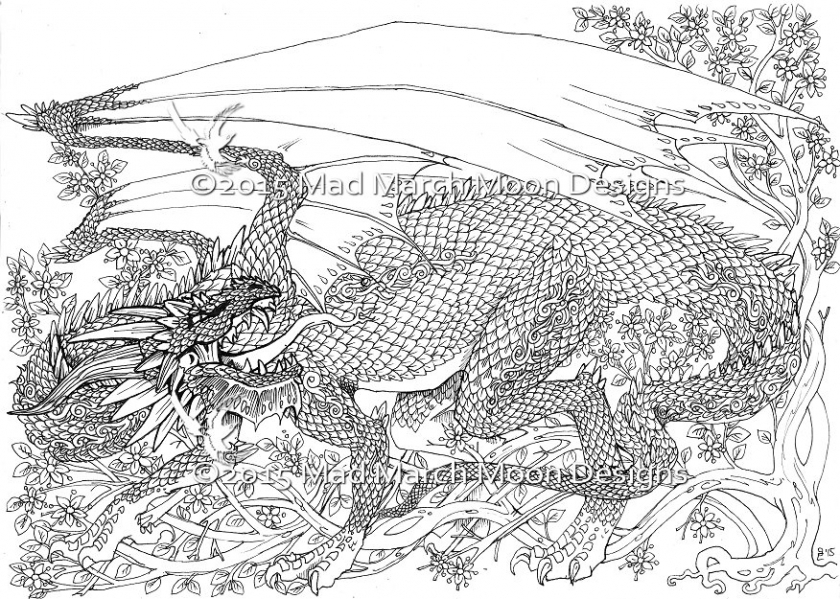 Dragon Coloring Pages for Adults Free Printable   ta2n4