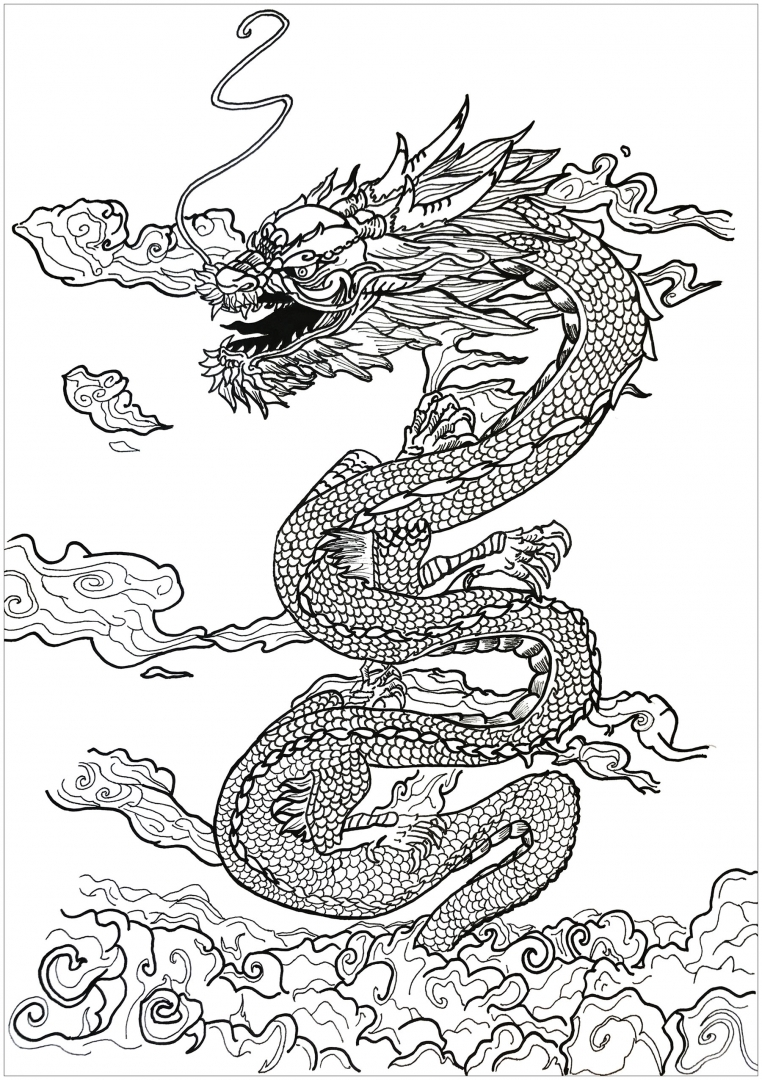 Dragon Coloring Pages for Adults to Print   17x52