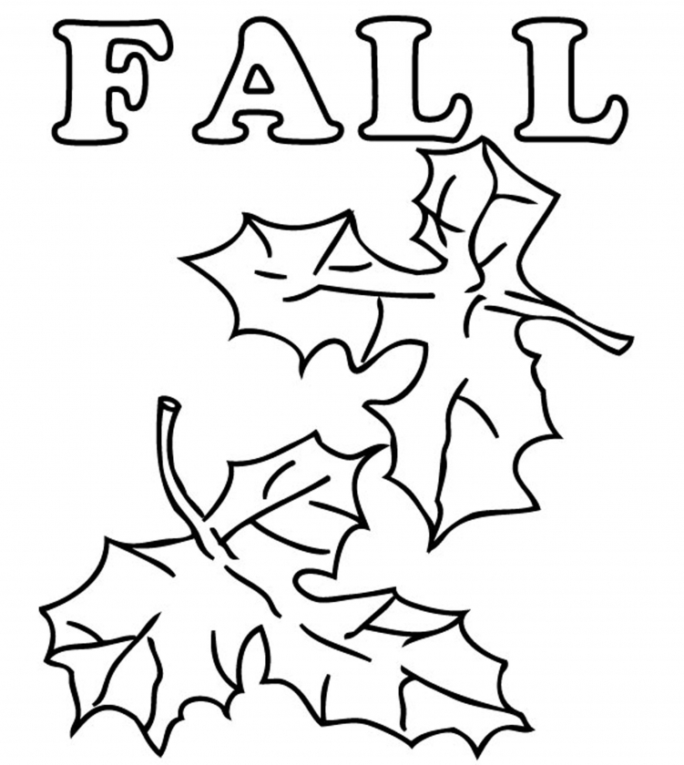 fall leaves coloring pages printable   u509m