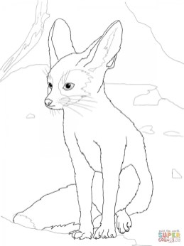 Fox Coloring Pages for Toddlers 2ay4m