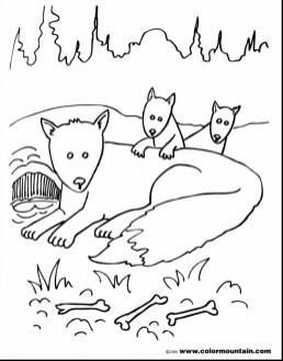 Fox Coloring Pages Printable way4n