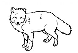 Fox Coloring Pages to Print 7wnc7