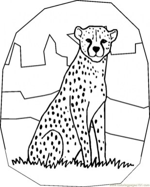 Free Printable Cheetah Coloring Pages 72xbp