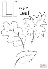 Leaf Coloring Pages Free to Print 8fg41