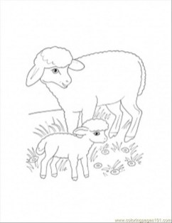 mother sheep and lamb coloring page 840jt