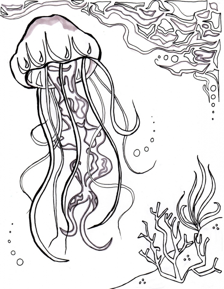 Get This Ocean Coloring Pages for Adults i57vb