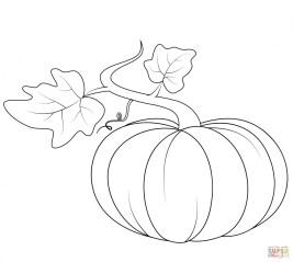 Pumpkin Coloring Pages Kids Printable 73619