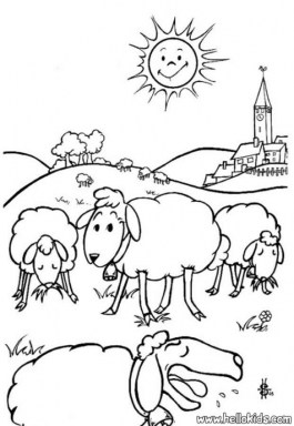 Sheep coloring pages free vxu6l